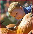 Pumpkin_click
