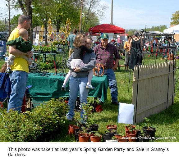 Granny-plant-sale