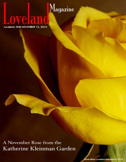 November-2010-cover