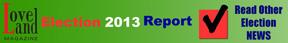 2013-election-report-facebookl