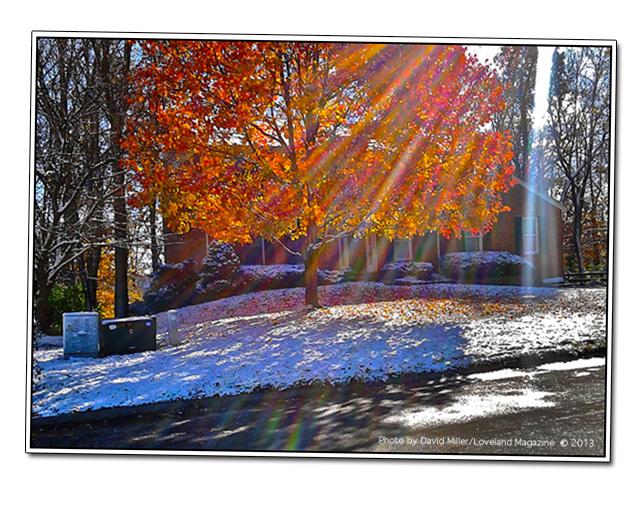 Fall-snow,-leaves,sun-rays