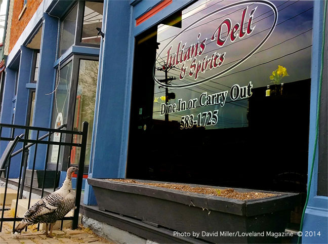 Wild-turkey-at-deli