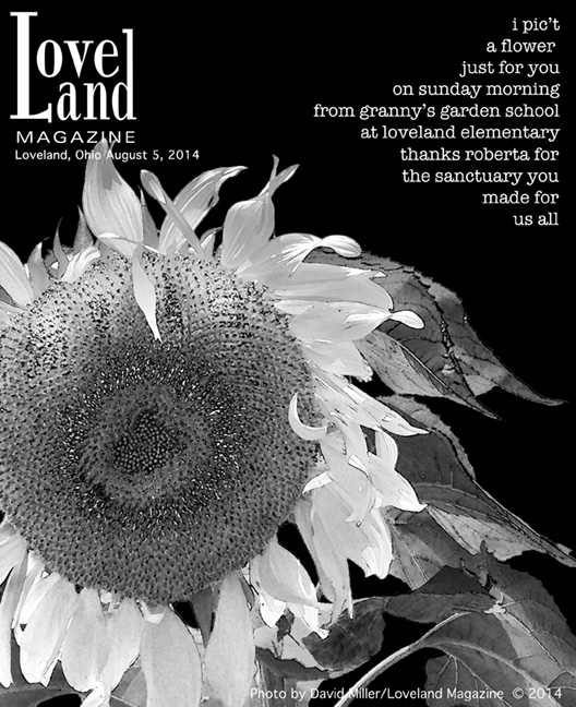 Cover-granny-sunflower-8-14