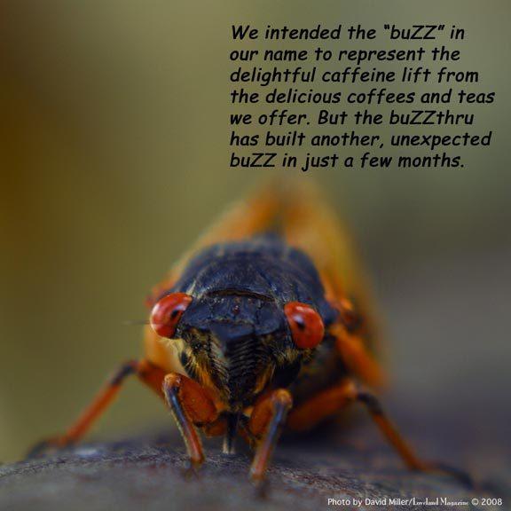 Buzzthrucic