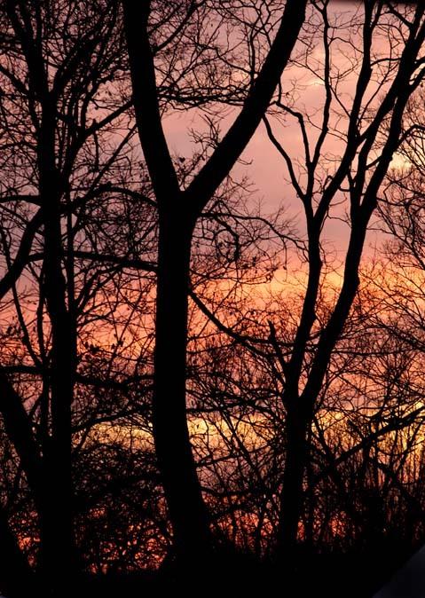 Sunrise_122804_1