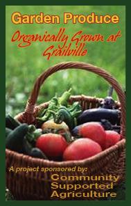 Vegetablesgraphic2